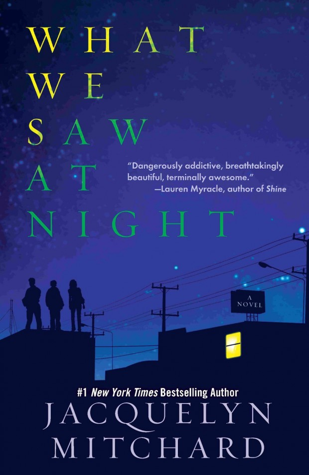 What We Saw At Night by Jacquelyn Mitchard | Good Books And Good Wine