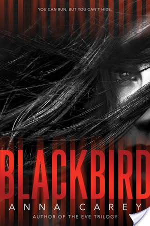 Blackbird by Anna Carey | Book Review
