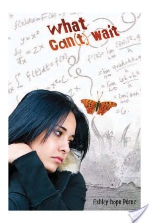 Book Review: What Can't Wait by Ashley Hope Perez